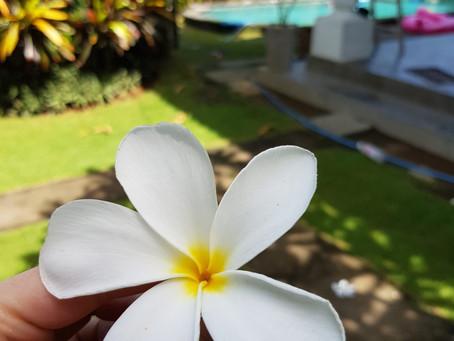 Framme på Bali