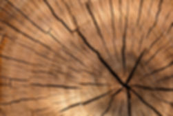 lumber-84678_1920.jpg