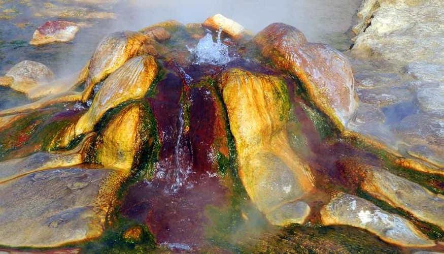 Red Water Springs