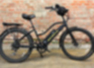 ebike for rent 1.jpg