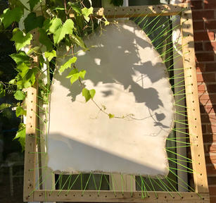 Parchment on frame