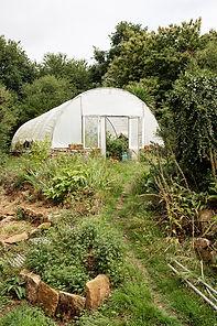 Jardindelaforet-31.jpg