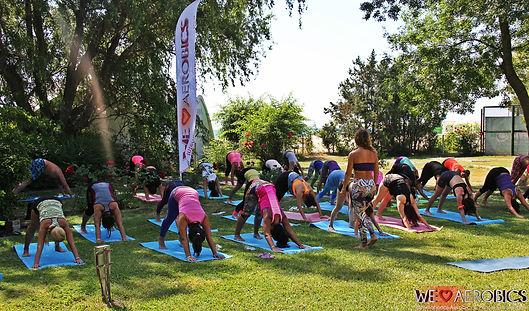 fitness festival