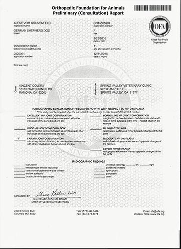 Aleses OFA Certificate.jpg