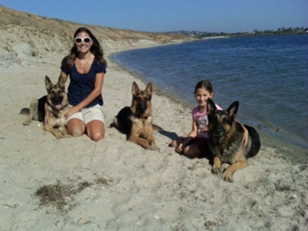 Family Dogs-Michelle and Cayla with Rocky, Elka and Ellie