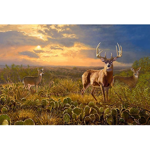 A True Texas Trophy - DIY Paint By Number Kit