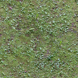 texture104.jpg