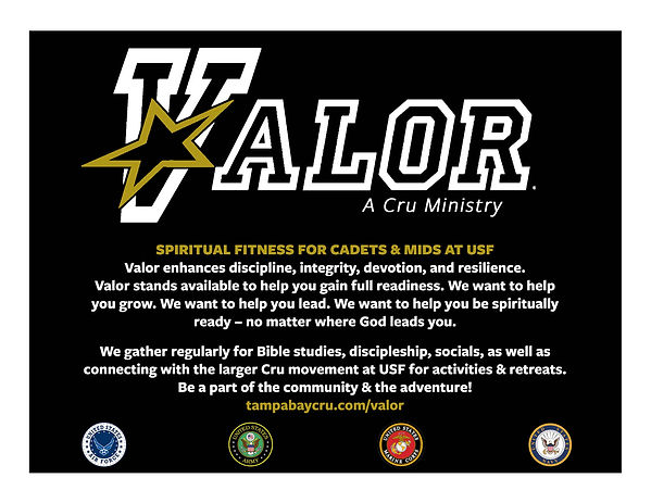 Valor Flier 1 back with insignia.jpg