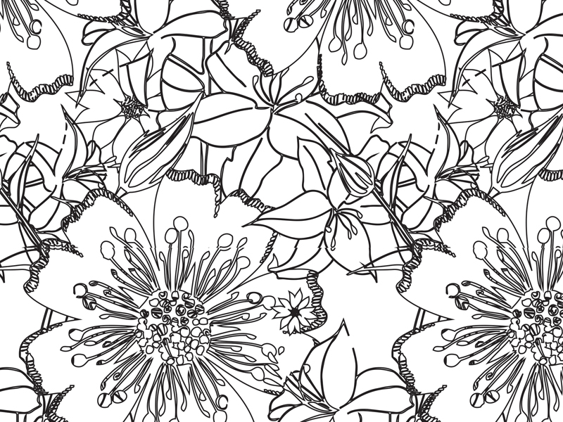In the garden Black & White