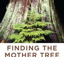 """""""Finding the Mother Tree,""""   Reviewed by Bill Schwab"""