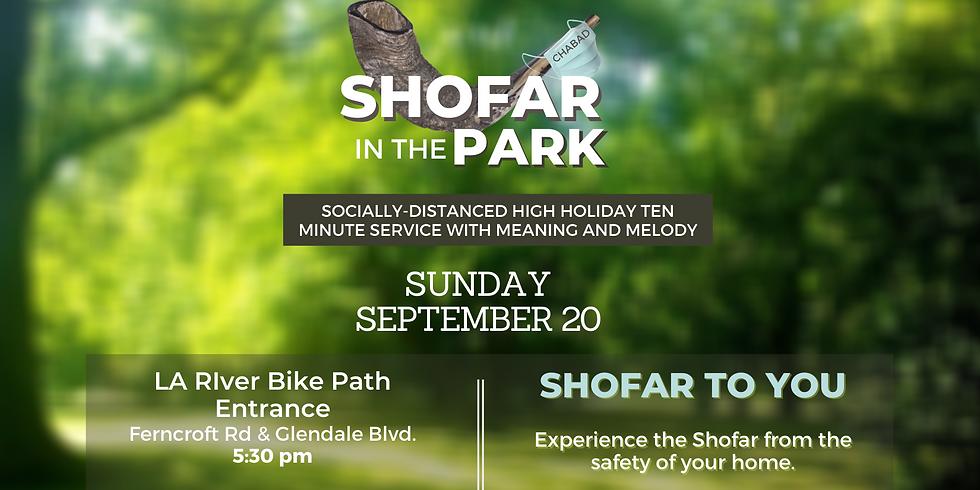 Rosh Hashana Outdoor Shofar Service