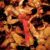 Website seafood picture homepage.png