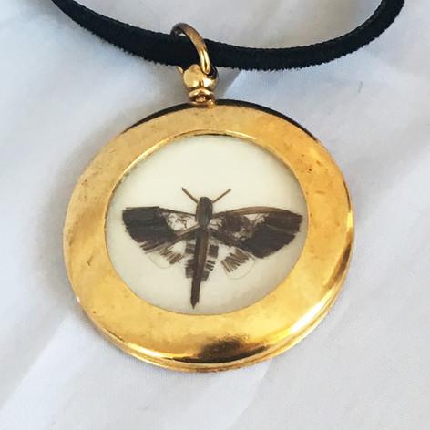 Moth Locket