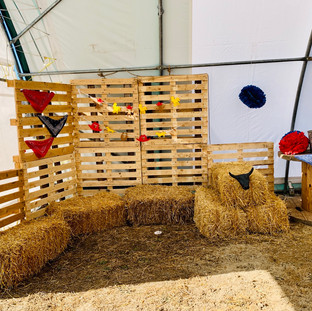 Barn Upgrade