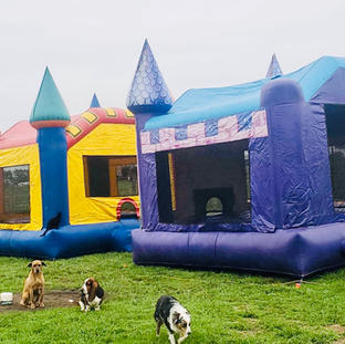 Princess and Castle Bounce House