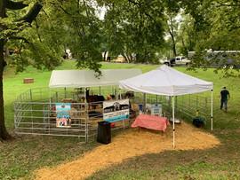 Southside Fall Festival