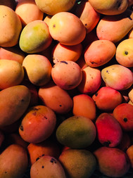 Mangos de la región