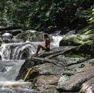 Disfrutar en naturaleza