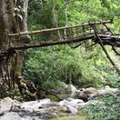 Puente indígena