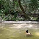 Disfrutar del río