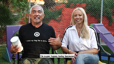 Happy Again and Cesar Millan