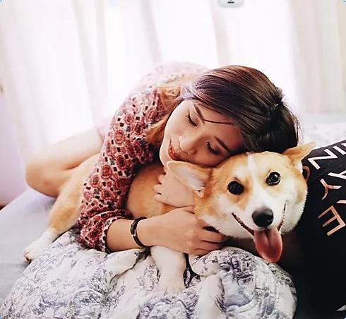 Give the Love - Dog