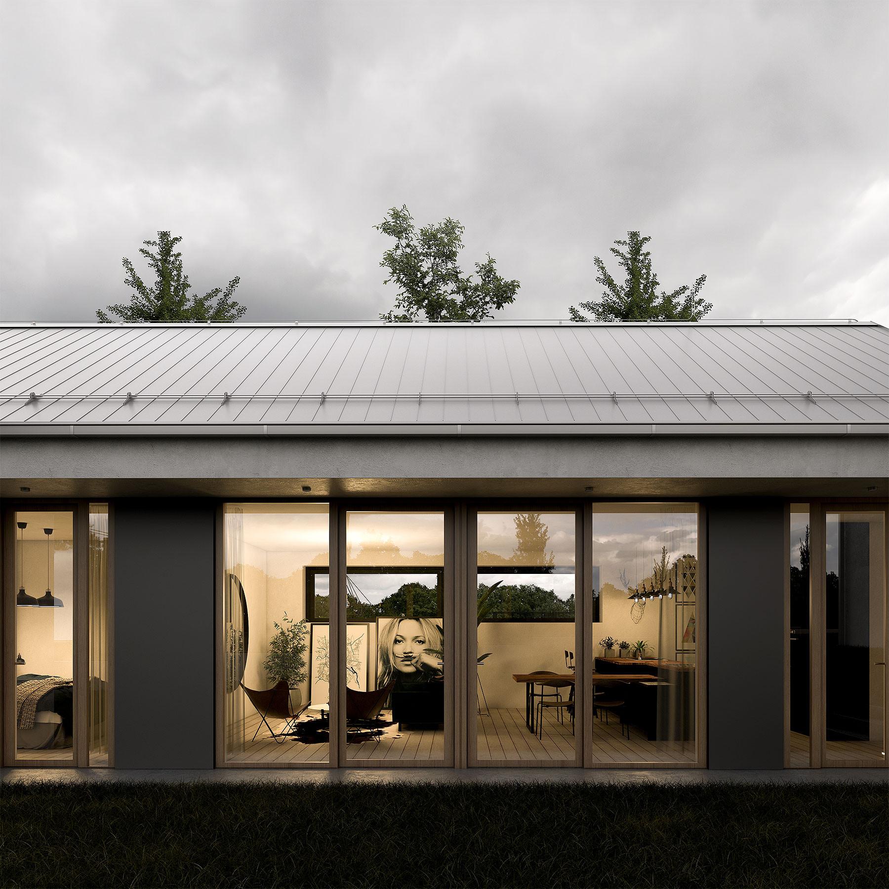 viceurovnova-moderni-vila-se-sikmou-strechou-dream-homes-plavec-detail