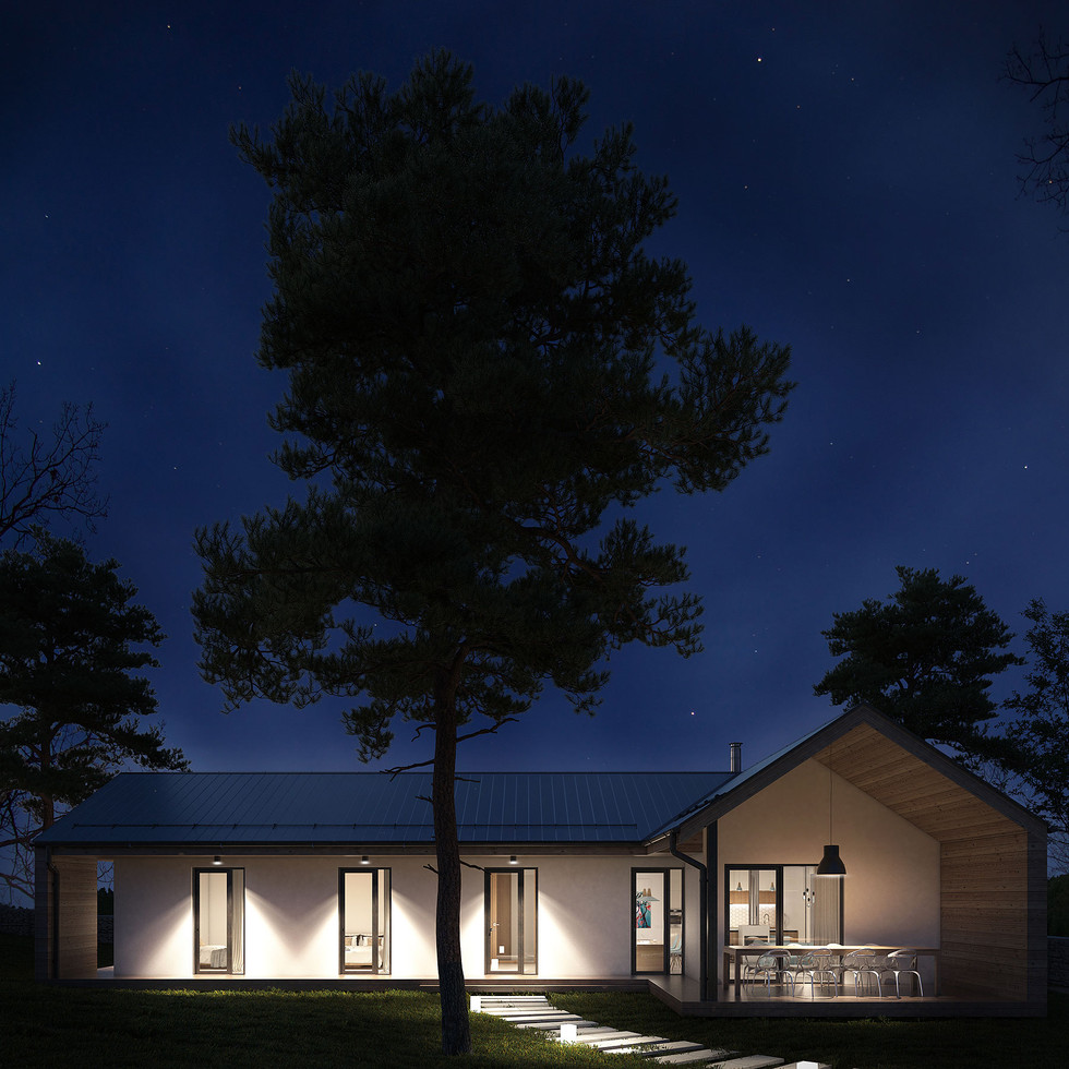 jednopodlazni_moderni_rodinny_dum_se_sikmou_strechou_dream_homes_plavec_noc