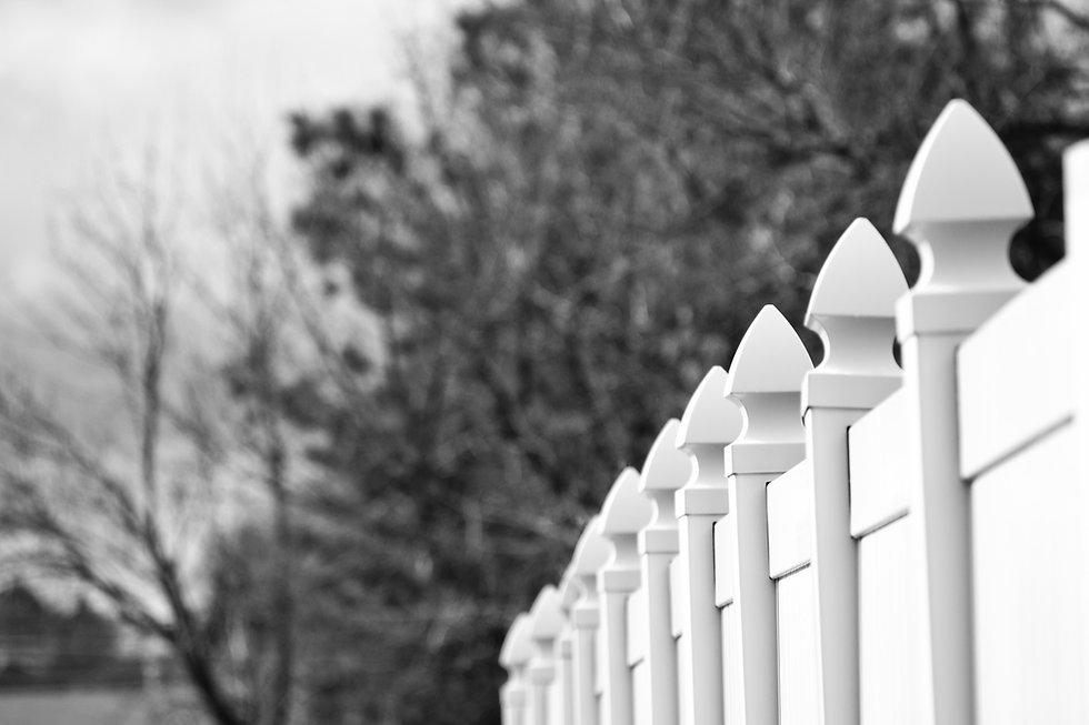 black-and-white-blur-branches-942469.jpg