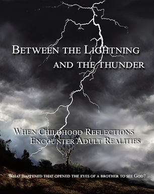 Book Cover for Web Page.jpg