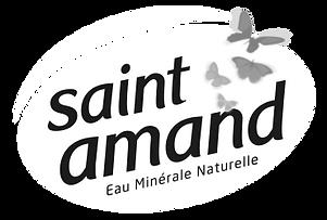 logo st amandN-B.png