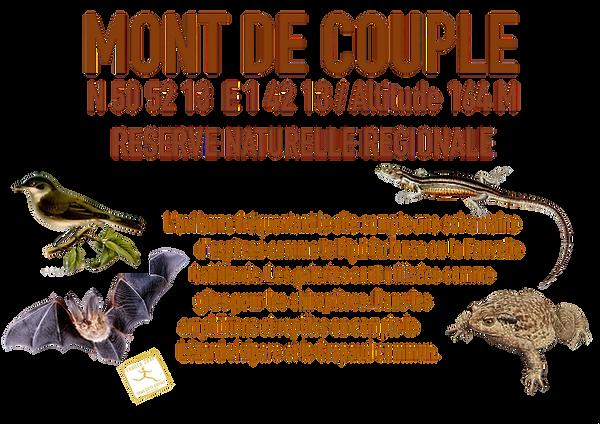 MONT_DE_COUPLE-removebg.png