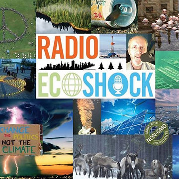 RadioEcoShock.jpg