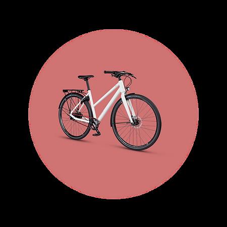MTBCycltech-bike-2.png