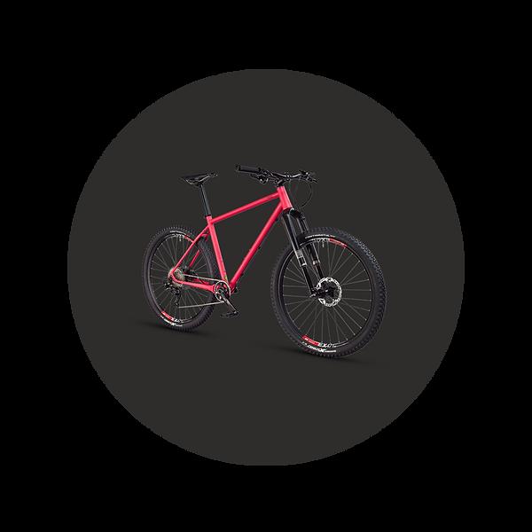 MTBCycltech-bike-4.png