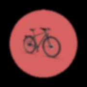 MTBCycltech-bike-11.png