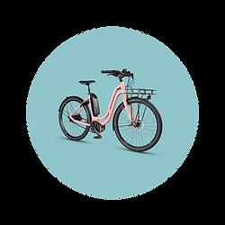 MTBCycltech-bike-6.png