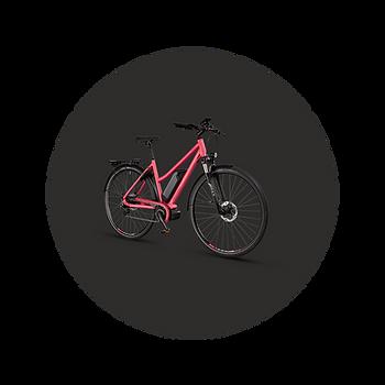 MTBCycltech-bike-12.png