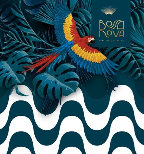 Bossa nova chocolate website