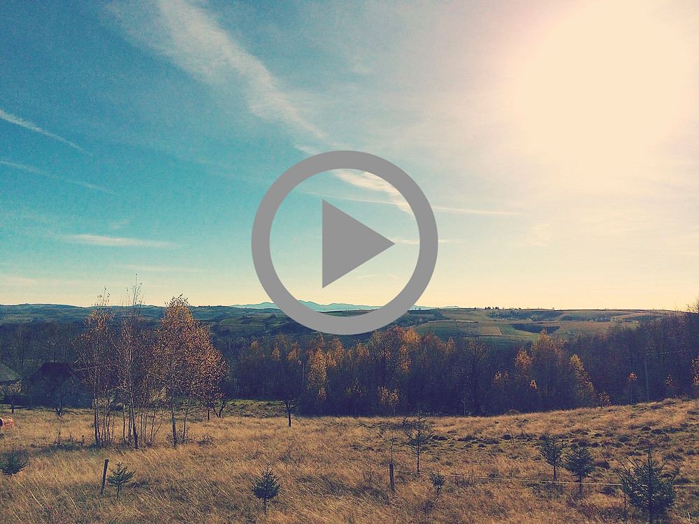 Watch our quick video to get an update about the on-going development of the camp property!