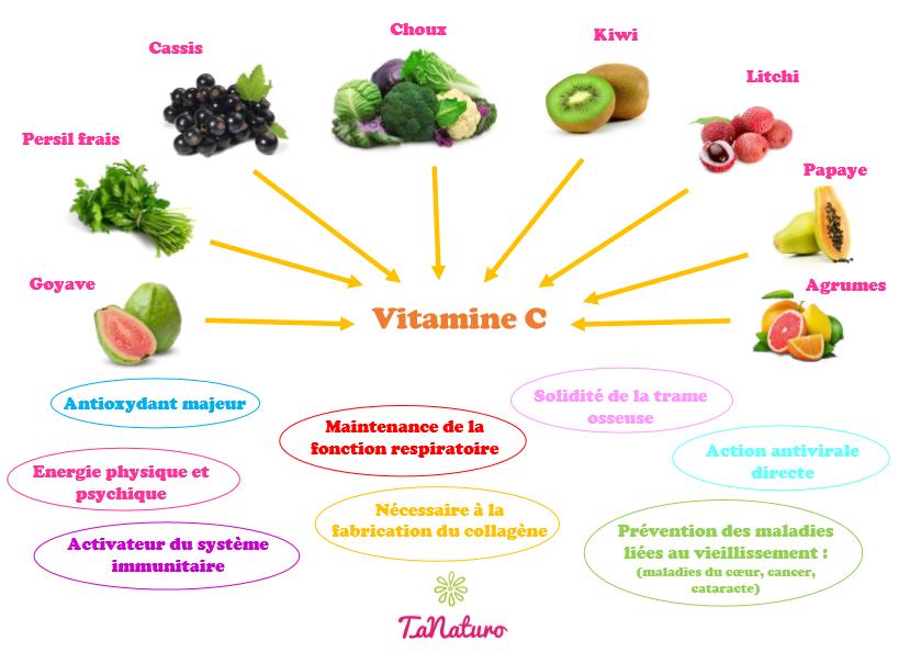 Sources et rôles de la vitamine C