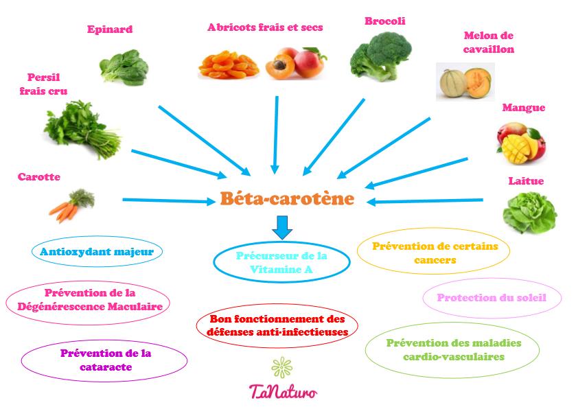 Sources et rôles du béta-carotène