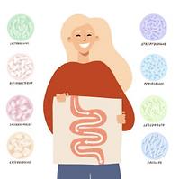 probiotiques10.PNG