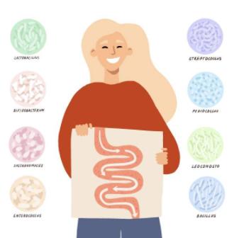 Les meilleurs probiotiques et prebiotiques naturels