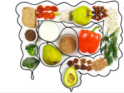 Aliments riches en fibres et microbiote intestinal