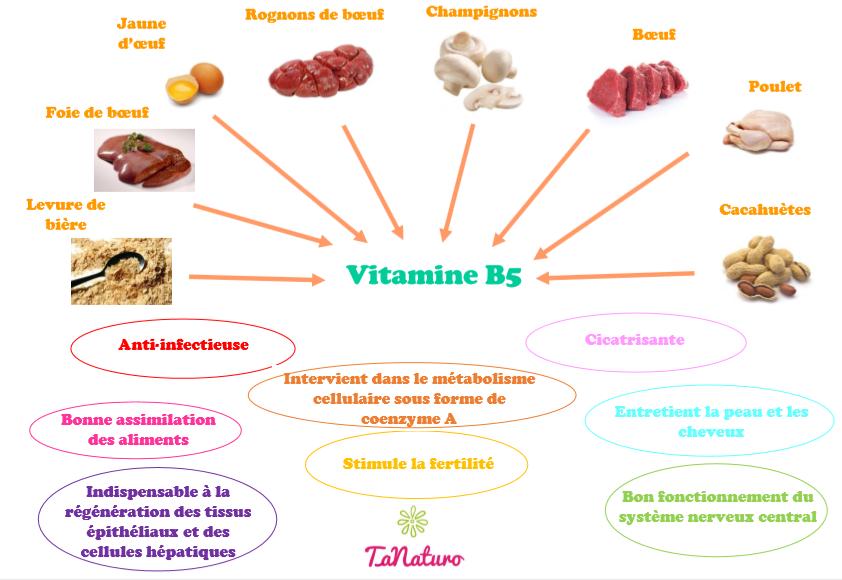 Sources et rôle de la vitamine B5