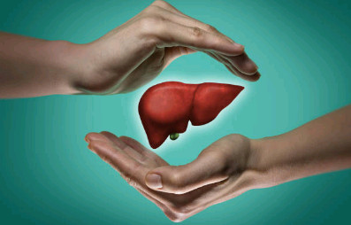 Le foie, organe émonctoire