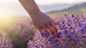 Ma reconversion professionnelle : comment je suis devenue naturopathe