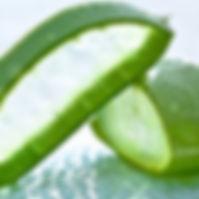 aloe-vera-health-benefits.jpg