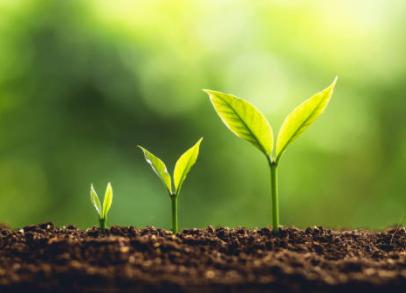 Evoluer, devenir naturopathe